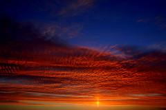 Baeta colorada (Eduardo Amorim) Tags: sunset brazil sun sol southamerica brasil clouds atardecer soleil tramonto sonnenuntergang prdosol nubes nuvens pelotas sole sonne riograndedosul poniente anoitecer coucherdesoleil brsil entardecer crepsculo amricadosul poente amriquedusud sudamrica suramrica amricadelsur sdamerika costadoce americadelsud americameridionale eduardoamorim