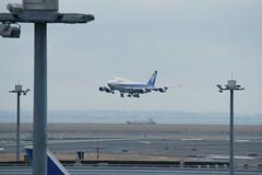 DSC00682 (ruri1011) Tags: tokyo airliner b747 hnd rjtt ja8961 alpha900 sal70400g2
