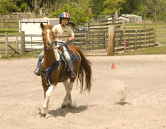 Cowgirl Up (Blue Moon Ranch) Tags: ranch blue horse moon mike cowboy texas control florida barrel competition rope western ribbon poles sumter cowgirl wildwood rider equestrian trot saddle gallop skill canterwildwoodflorida yakin669