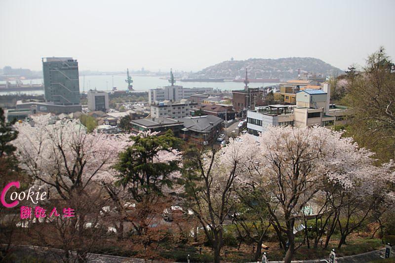 韓國 (41)