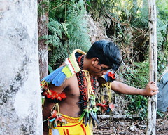 Aldeia Quatro Cachoeiras (fergprado) Tags: travel boy brazil brasil culture garoto menino cultura tribo indigenous aldeia ndio idigena