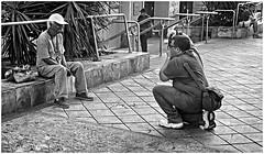 Fotgrafo Callejero (Street Photographer) (Samy Collazo) Tags: leica bw photographer kodak bn aviary fotografo streetphotographer kodaktrix400 kodakd76 lightroom3 epsonperfectionv500scanner lightyroom niksilverefexpro2 leicalllf1953 summitar5cmf201953 foootografocallejero