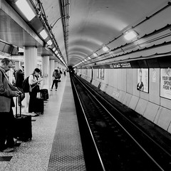 #chicago #blueline (sidtysmith) Tags: chicago blueline