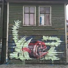 Piranha (svennevenn) Tags: fish streetart graffiti bergen fisk hur piranhas gatekunst pirayaer