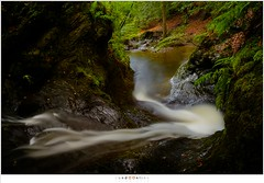 Right, left but always downwards (nandOOnline) Tags: water beek ardennen natuur nat m bos landschap waterval rivier ninglinspo bergrivier stroomversnelling bergbeek