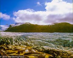 Svinafellsjökull glacier and lagoon (film) (wanderingYew2 (thanks for 3M+ views!)) Tags: 120 mamiya film mediumformat iceland nationalpark glacier 6x7 filmscan vatnajökull mamiya7ii glaciallagoon vatnajökullglacier svínafellsjökull svínafellsjökullglacier vatnajökulsþjóðgarður vatnajökullnationalpark