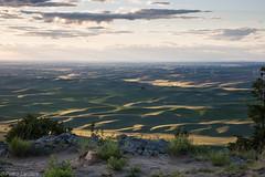 Sunset on Steptoe Butte 1 (PedroLanders) Tags: windturbine palouse steptoebutte