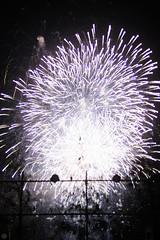 20160604-DS7_5552.jpg (d3_plus) Tags: street sea sky food festival japan port 50mm drive nikon scenery nightshot stage traditional firework  nightview nikkor  shizuoka   touring  izu  50mmf14       fishingport  inatori 50mmf14d   nikkor50mmf14  zoomlense     afnikkor50mmf14 nikon1 50mmf14s d700 nikond700 aiafnikkor50mmf14 nikonaiafnikkor50mmf14