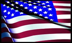 American Flag (DarylLee) Tags: flag americanflag usflag adobeillustrator