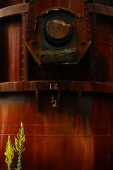 Nature prevails (chmeermann | www.chm-photography.com) Tags: nikon details blumen nikkor hochzeit industrie lightroom feier 18135 hochformat portraitformat d7100 personlich colorefexpro4