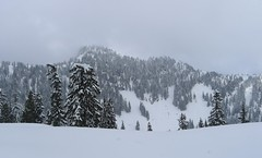 Around Grouse Mountain (fsteffenhagen) Tags: winter mountain snow grouse