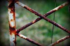 Rusted cross (Sol Brimars) Tags: old macro cemetery grave metal iceland spring cross decay rusty reykjavik cracked sland 2012 ecu oxidized gravemarker metalgravemarkers gufuneskirkjugarur