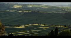 valdorcia [Explore Front Page] (miglio) Tags: verde green canon explore tuscany toscana valdorcia orcia eplored canoneos7d