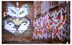 Nasimo Noway (dews cult) Tags: film vancouver yard canon graffiti kodak tracks noway a1 e100vs vts nasimo
