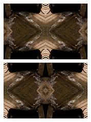 Two Wings of Infinity (Ry∆_Niven) Tags: ryan freelance niven portraitphotographer travelphotography nvn chicagophotographer chicagophotography kaliescope ryanniven midwestphotographer chicagofreelancephotographer ryannivenphotography nivenphotography ryannivenphoto nivenphoto ryanniventravelphotography wwwryannivenphotographycom ryannivenphotographycom ryannivenchicago ryannivenchicagophotographer freelancechicago ryannivenphotographer lookingforchicagophotographer