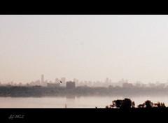 Hazy morning with cinemascope effect (Trinimusic2008 - stay blessed) Tags: city sky mist lake toronto ontario canada nature silhouette haze to canadianfemalephotographers picasa3 trinimusic2008 may2012 judymeikle nameaddedwithpicnik