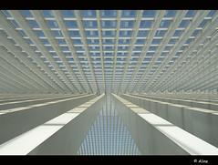 Lines in the sky (Just me, Aline) Tags: reflection window glass lines station architecture belgium gare belgië calatrava symmetric liege glas luik raam lijnen reflectie guillemins archtitectuur flickrdiamond
