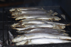Savoury Savonian food at Kalaryssys - Smoked whitefish 15 (J-P Korpi-Vartiainen) Tags: autumn food fish work square market cook september event meal portion whitefish tori fried kala kuopio happening ruoka serve kokata keitti syksy ravintola ruoanlaitto annos ruokaa syyskuu tapahtuma markkinat siika elintarvike kestapahtuma savustettu pohjoissavo laittaa jpko kalaruoka kalaryssys