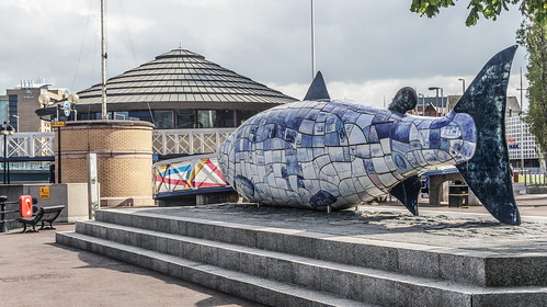 Belfast: The Big Fish
