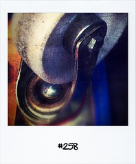 """#DailyPolaroid of 12-6-12 #258 • <a style=""""font-size:0.8em;"""" href=""""http://www.flickr.com/photos/47939785@N05/7374514146/"""" target=""""_blank"""">View on Flickr</a>"""