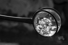"""Future is in a bubble • <a style=""""font-size:0.8em;"""" href=""""http://www.flickr.com/photos/49106436@N00/13243827944/"""" target=""""_blank"""">View on Flickr</a>"""
