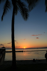 Sunset 1 (mjrtom999) Tags: sunset hawaii waikiki palm