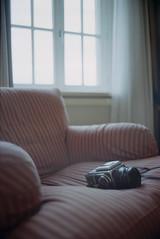 psssst (fluffisch) Tags: leica film analog 35mm kodak f14 rangefinder leipzig summilux m6 portra400 36x24 preasph kleinbild summiluxm35f14 fluffisch
