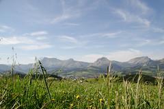 _DSC2447 (adrizufe) Tags: naturaleza green nature grass landscape ilovenature nikon ngc basquecountry springtime sunnyday garai durangaldea nikonstunninggallery aplusphoto d7000 adrizufe adrianzubia