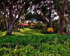 a tropical retreat (SM Tham) Tags: trees bali plants house beach home grass garden indonesia outdoors island compound shrine asia lawn shrubs tropics sanur