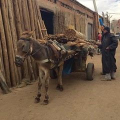 Bab l'khmis (yaelgasnier) Tags: street travel square colorfull morocco squareformat maroc marrakech marruecos marokko  wonderfulplaces   shotaward vsco beautifuldestinations iphoneography instagramapp instamorocco igworldclub iphone6plus marocphotonet