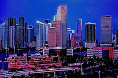 View of downtown Miami, Florida, U.S.A. @ the Blue Hour (Jorge Marco Molina) Tags: city usa building skyscraper dawn cosmopolitan cityscape metro florida miami citylights metropolis bluehour metropolitan density southflorida centralbusinessdistrict biscaynebay magiccity sunshinestate portofmiami miamidadecounty themagiccity usadowntown miamitower