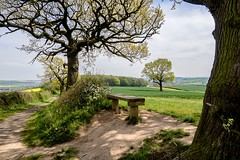 A Spring View...... (klythawk) Tags: nottingham trees brown sunlight white black green yellow clouds bench landscape grey spring beige shadows blossom seat bluesky olympus fields crops pathway omd em1 newleaves calverton 1240mm dorkethead klythawk