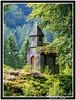 chapelle St Jacques à  Kichompré (De Bretagne et d'ailleurs) Tags: france forêt vosges clocher bardage canon28135 gérardmer canon400d chapellesaintjacques kichompré