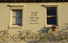 I thought of that (Toky, Lily and George moments) Tags: streetart wall streetphotography wallart bicycles brickwall castlemaine philosopher alberteinstein physicist goldfields housewall ithoughtofthatwhileridingabicycle