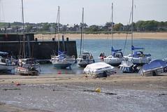 Elie Wood Haven (a-r-a-55) Tags: scotland hafen segeln elie schottland segelboote grosbritannien