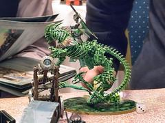 EU Retail Workshop Event - Age of Sigmar - 086 (Warhammer Lyon 2) Tags: warhammer gamesworkshop ageofsigmar