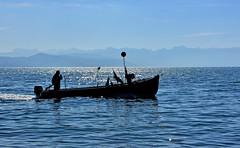 Dpart en pche (Diegojack) Tags: nikon lac bateau lman paysages contrejour pcheurs tolochenaz boiron nikonpassion d7200