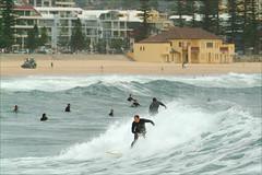 Manly Beach Colour Photos (Thomas Joannes) Tags: australia manlymarket photoscenic sydney sydneybeaches therocksmarket australie frenchphotographer image joannes manlybeach photographe picture sceneries scenicphoto seascape surf surfboard surfer surfing thomas thomasjoannes tourism waves