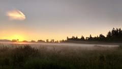 Sunrise (careth@2012) Tags: field clouds sunrise dawn nikon scenery mood view scenic peaceful atmosphere scene serene wilderness tranquil atmospheric 55300mm nikond3300 d3300