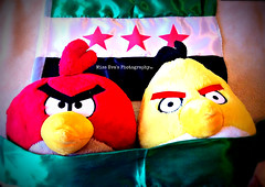 Angry birds are angry for Syria! (Sara's iPod..) Tags: red black green birds wall stars freedom march graphic air text breath free angry syria independence dignity hama homs global doha halab damscus