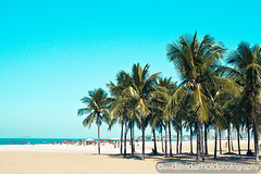 Rio Fun (davidarnoldphoto) Tags: ocean travel summer brazil vacation people mountains praia beach rio brasil buildings fun island mar colorful surf bluesky copacabana palmtrees leisure ilha riodejaniero