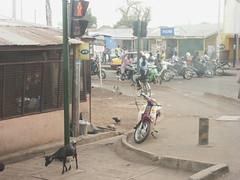 for feet two wheels (k-os) Tags: traffic market goat motorbike ghana tamale