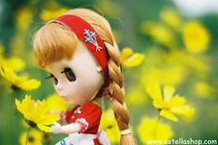 I like wildflower