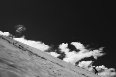 up (StephenCairns) Tags: blackandwhite bw sun up japan umbrella climb sand desert dune hill 日本 nocrop tottori 鳥取 鳥取砂丘 stephencairns