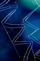 Web macro (Deb Jones1) Tags: blue abstract nature beauty canon spider patterns spiderweb webs flickawards debjones1