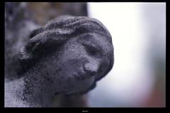 Statue... (Strange Artifact) Tags: nikon fuji f100 100 asa expired 2008 coolscan sensia 128 groot 105mm kiron levenstuinen ls40 hontschoten