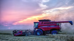 Case IH 9120 harvesting wheat at sunset (Marvin Bredel) Tags: oklahoma farm machine machinery combine farmmachinery wheatharvest marvinbredel