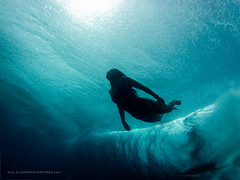 (SARA LEE) Tags: woman girl silhouette fiji underwater cloudbreak tavarua sarahlee gopro odina goprohero2 alisonteal blurfix alisonsadventures sportscamerahire