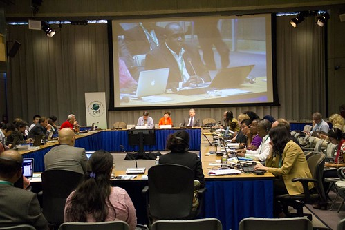 42nd Council Meeting - GEF Consultation with CSOs