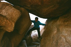 Rock scrambling (kaysedilla) Tags: tree film rock 35mm photography kodak joshua outdoor climbing scrambling